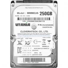 0250Gb Новый SATA Clover Hightech Utania MM802JS 2.5 5400rpm 8Mb